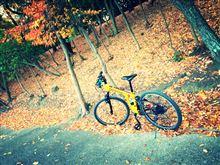 ツッキー@AZさんのマウンテンバイク 左サイド画像
