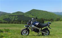 lonesome-riderさんのモンキーRT メイン画像