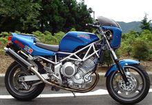 rider61さんのTRX850 左サイド画像
