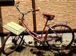輸入車その他 自転車