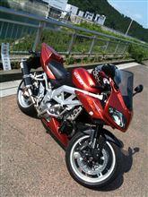 RinoMikaさんのSV1000S メイン画像
