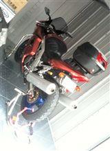 RinoMikaさんのSV1000S リア画像