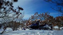 アメ車とジェットとポメラニアンさんのヤマハ インテリア画像