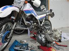 エンジン(S/C)さんのSEROW225 リア画像