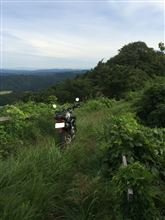 マタヲさんのXR250 リア画像