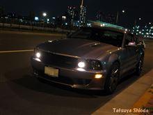 tatsu-c8cさんのS281 メイン画像