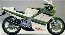 エモヤンさんのKR-1 リア画像