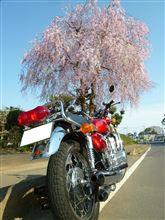 茨城のシーマさんのGT750 メイン画像