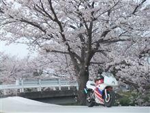 ☆н!яσ☆さんのNS50R メイン画像