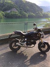 kataokaiさんのMSX125 左サイド画像