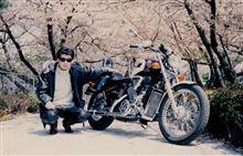 HARAHOUSEさんのSTEED400 メイン画像