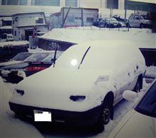 遅咲きガールさんのランサーバン メイン画像
