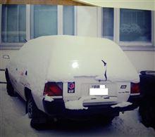 遅咲きガールさんのランサーバン リア画像