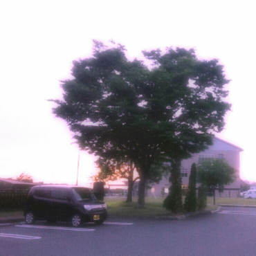 スズキ MRワゴン