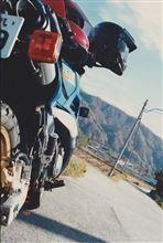 恋思さんのTDR250 左サイド画像