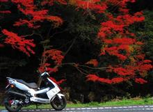 イタ3さんのG-MAX220 左サイド画像