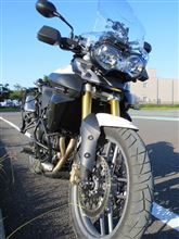 ビグフィーさんのTiger800 ABS (タイガー) メイン画像