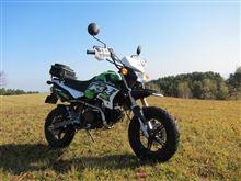 lonesome-riderさんのKSR PRO メイン画像