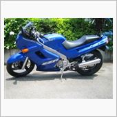 clearboxさんのZZR250