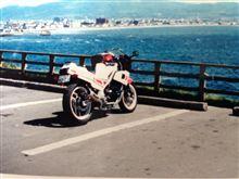 c26セレナさんのFZ400R リア画像