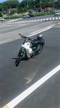 ニャンコ先生 見回り編さんのスーパーカブ50デラックス リア画像