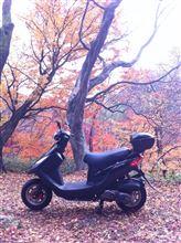黒豆君さんのX'Pro100 リア画像