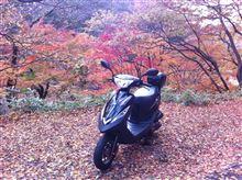 黒豆君さんのX'Pro100 インテリア画像