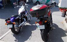 BJパパさんのVT400S リア画像