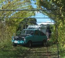 loubonさんのポータートラック メイン画像