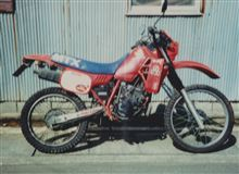 carz.さんのMTX125R 左サイド画像