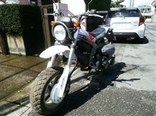 sinkichiさんのストリートマジックII110 メイン画像