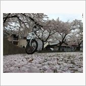 よともさんの折畳自転車