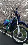 カワサキ KDX125