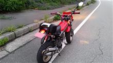 ピンクビームさんのストリートマジックII110 リア画像