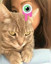 うぇい子さんのスーパー6 インテリア画像