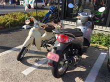 seiichi24163さんのスカラベオ リア画像