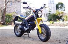 MIKAN498さんのストリートマジックII110 メイン画像