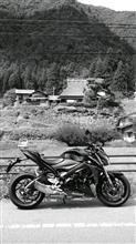 ボリージョさんのGSX-S1000 ABS 左サイド画像