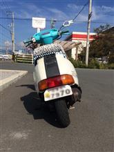 金欠ぱおくんさんのDJ-1 リア画像