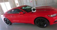 赤いPonyのこうちゃんさんの愛車:フォード マスタング クーペ
