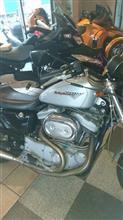 mnmkrpapa2さんのXL1200S メイン画像