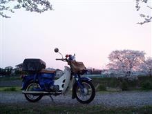 ザ・ドライバーさんのスーパーカブ デリバリー (郵政カブMD90) メイン画像