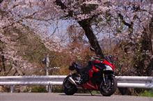 topac(トパく)さんのGSX-S1000F ABS 左サイド画像