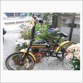 ☆ZECSS★さんのマウンテンバイク
