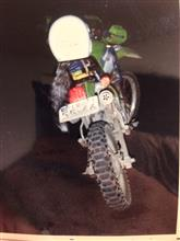 kid777さんのKL250R リア画像