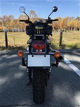 K884さんのスクランブラー900 リア画像