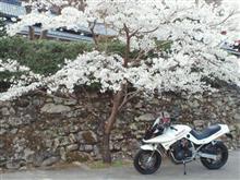 narukoさんのGSX750S KATANA (カタナ) インテリア画像