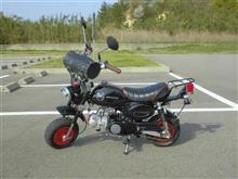 チョコ王さんのモンキー  Z50J-I メイン画像