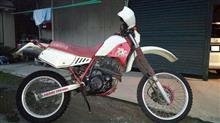 元祖かれんさんのヤマハ TT-250 オーストラリア仕様 メイン画像