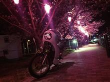 クマっしー☆さんのRG250E メイン画像
